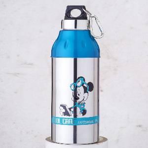 Steel & Plastic Insulated Bottle